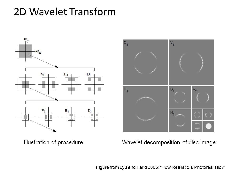 2D Wavelet Transform Illustration of procedure Wavelet decomposition of disc image Figure from Lyu and Farid 2005: How Realistic is Photorealistic