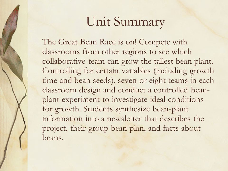 Unit Summary The Great Bean Race is on.