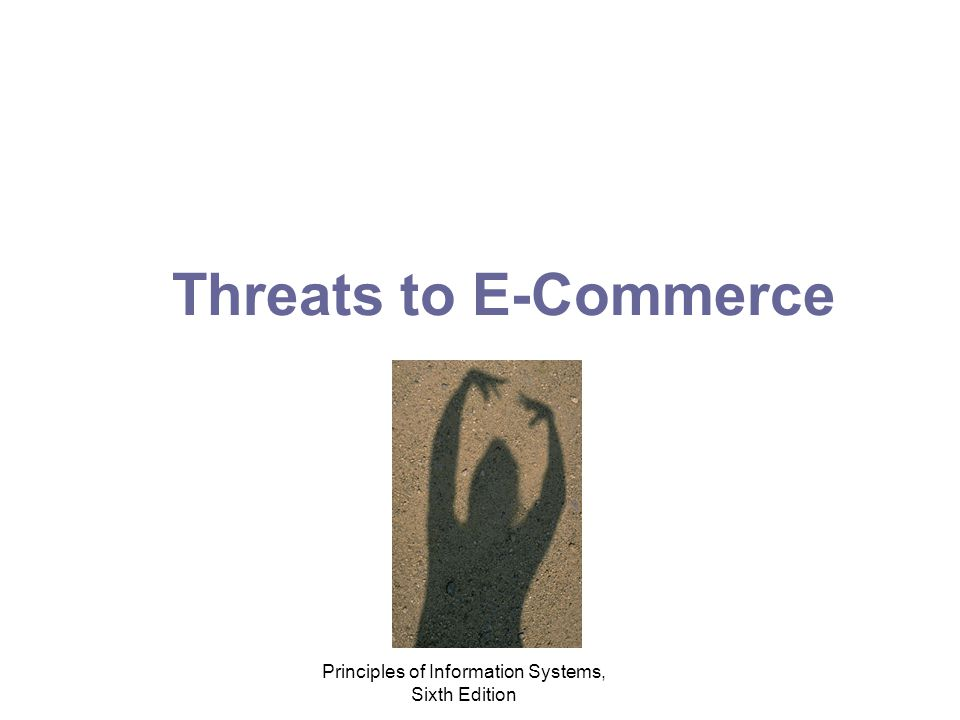 Principles of Information Systems, Sixth Edition Threats to E-Commerce