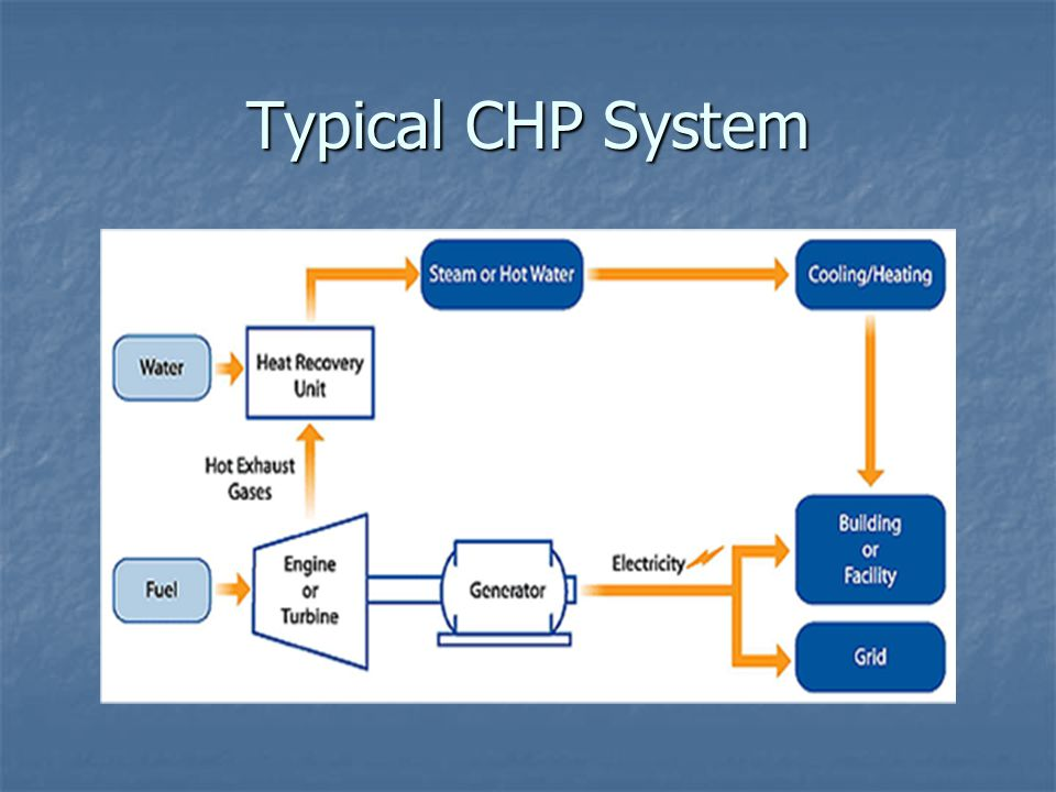 Typical CHP System