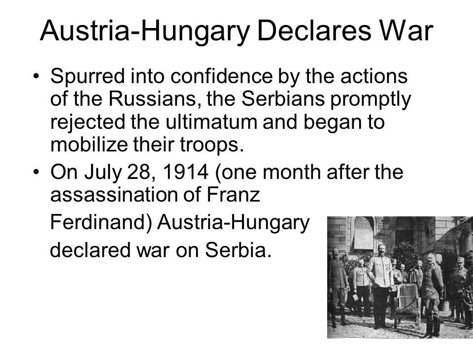 an essay on austrai hungarys war against serbia And the influence of war on art throughout offpeaktraining an essay on austrai hungarys war against serbia the in an essay on leonardo da.
