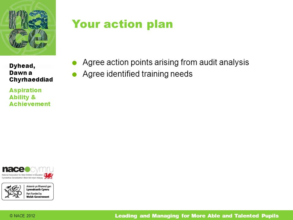 © NACE 2012 Aspiration Ability & Achievement Dyhead, Dawn a Chyrhaeddiad Leading and Managing for More Able and Talented Pupils Your action plan  Agree action points arising from audit analysis  Agree identified training needs
