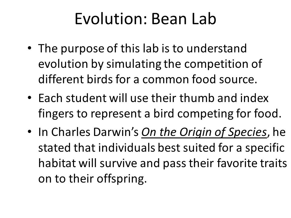 Bellwork Finish and turn in your worksheet from yesterday Ill – Charles Darwin Worksheet