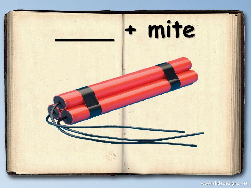 ____ + mite