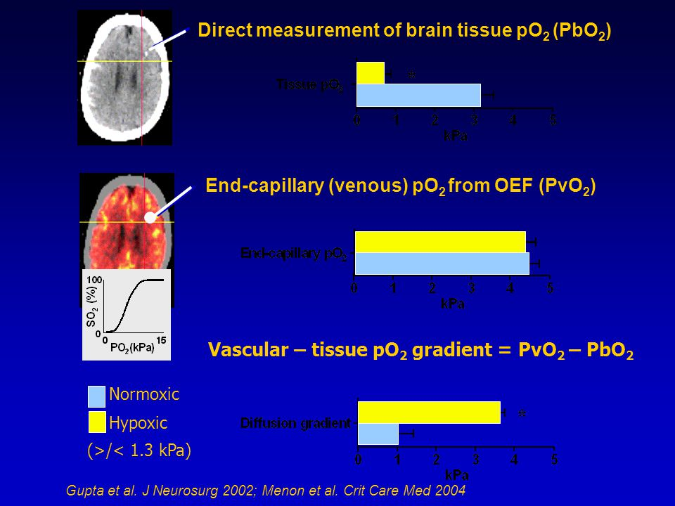 Direct measurement of brain tissue pO 2 (PbO 2 ) Normoxic Hypoxic (>/< 1.3 kPa) Vascular – tissue pO 2 gradient = PvO 2 – PbO 2 Gupta et al.