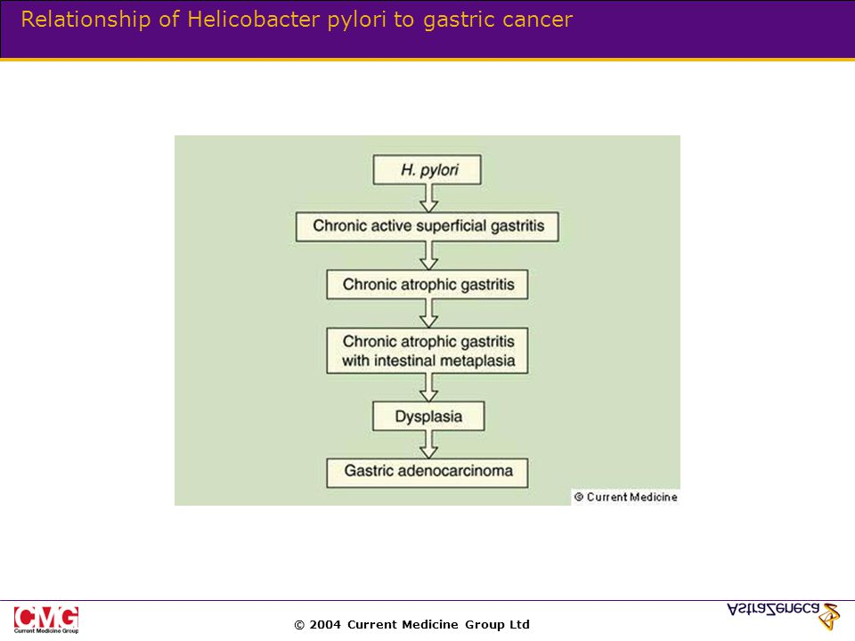 © 2004 Current Medicine Group Ltd Relationship of Helicobacter pylori to gastric cancer