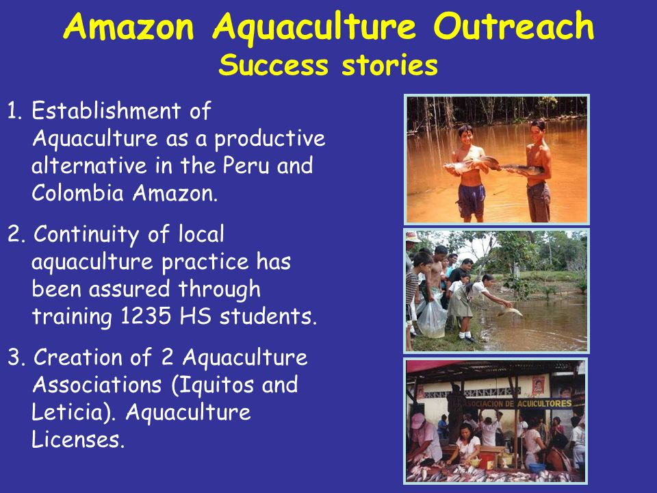 1.Establishment of Aquaculture as a productive alternative in the Peru and Colombia Amazon.