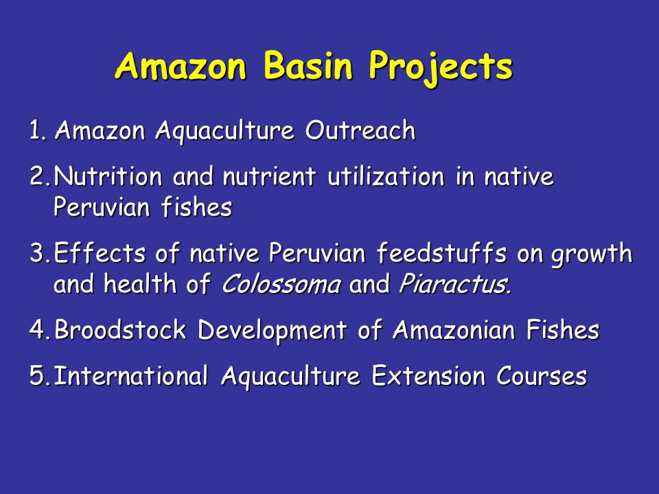 1.Amazon Aquaculture Outreach 2.Nutrition and nutrient utilization in native Peruvian fishes 3.Effects of native Peruvian feedstuffs on growth and health of Colossoma and Piaractus.