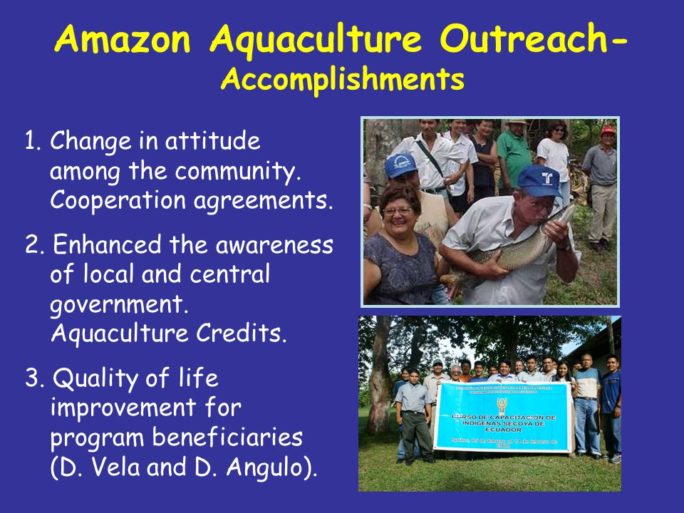 Aquaculture facilities are growing In Loreto Region: 2000: around 100 acres 2007: about 1400 acres destined to aquaculture practices In the Peruvian Amazon: Currently about 4,000 acres adding Loreto, Ucayali, San Martín, Huánuco, Junín, Madre de Dios and Amazonas.