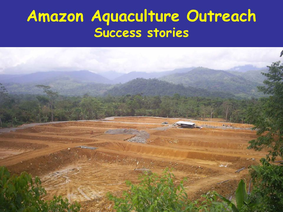 1.Establishment of Aquaculture as a productive alternative in the Peru and Colombia Amazon.