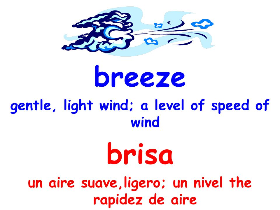 breeze gentle, light wind; a level of speed of wind brisa un aire suave,ligero; un nivel the rapidez de aire