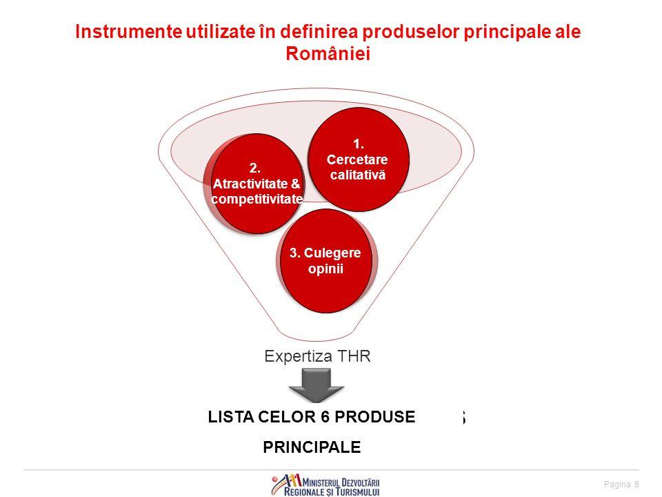 Instrumente utilizate în definirea produselor principale ale României Pagina 8 LIST OF TOP 6 PRODUCTS 3.