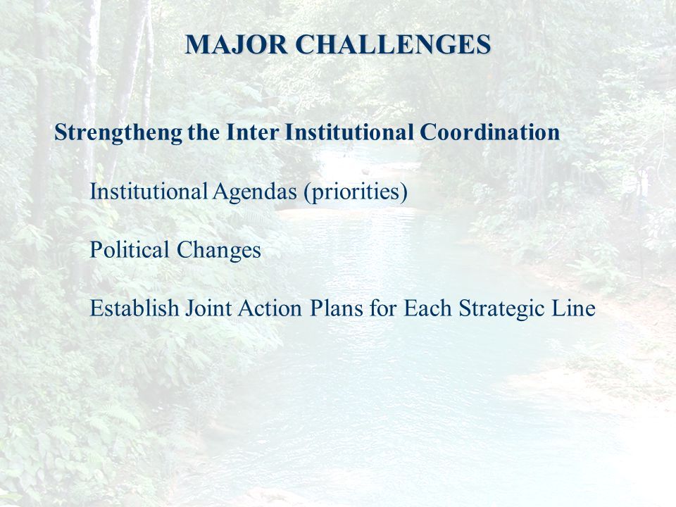 11 MAJOR CHALLENGES Strengtheng the Inter Institutional Coordination Institutional Agendas (priorities) Political Changes Establish Joint Action Plans