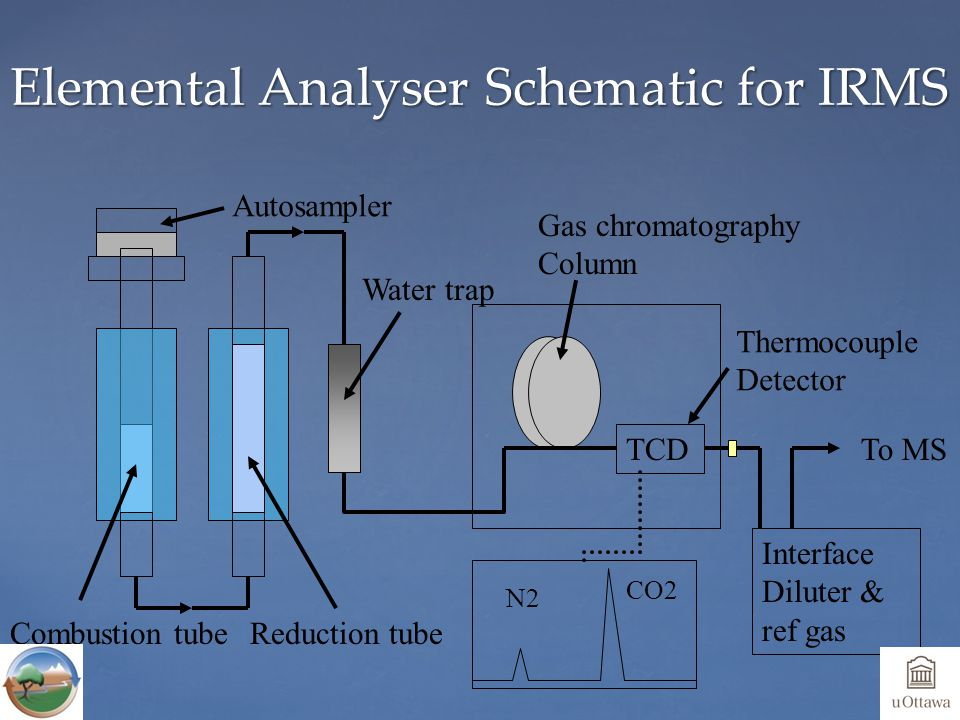 Elemental Analyser Schematic for IRMS TCD Combustion tubeReduction tube Water trap Gas chromatography Column Thermocouple Detector Autosampler To MS N2 CO2 Interface Diluter & ref gas