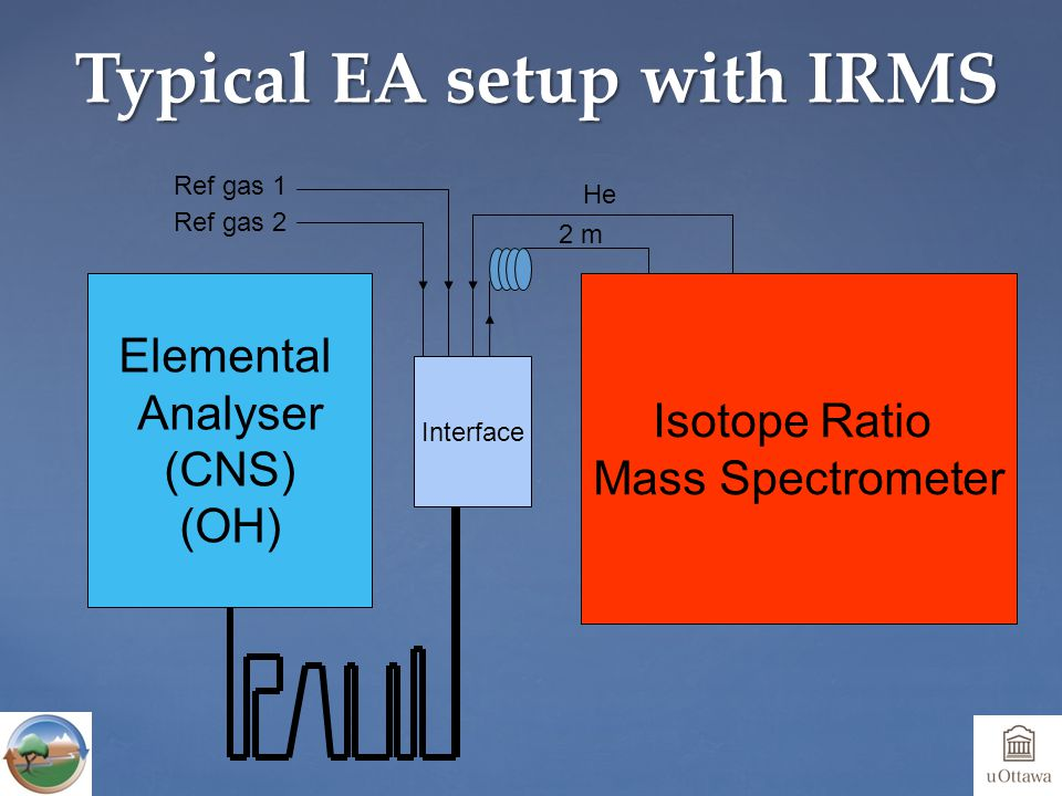 Ref gas 1 Elemental Analyser (CNS) (OH) Interface Isotope Ratio Mass Spectrometer He Ref gas 2 2 m Typical EA setup with IRMS