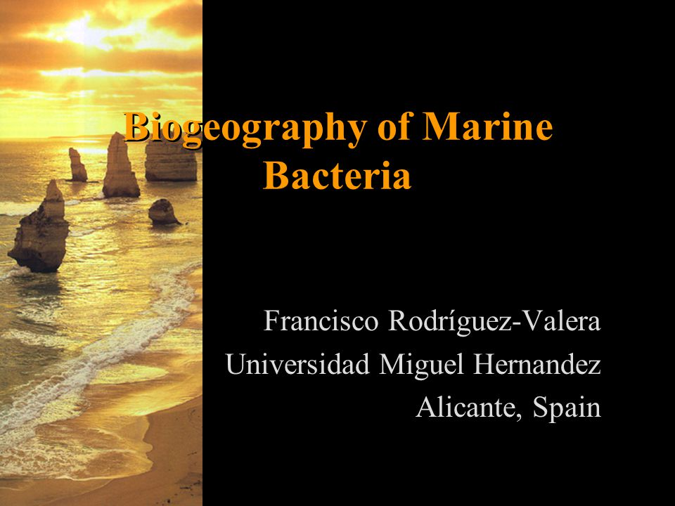Biogeography of Marine Bacteria Francisco Rodríguez-Valera Universidad Miguel Hernandez Alicante, Spain