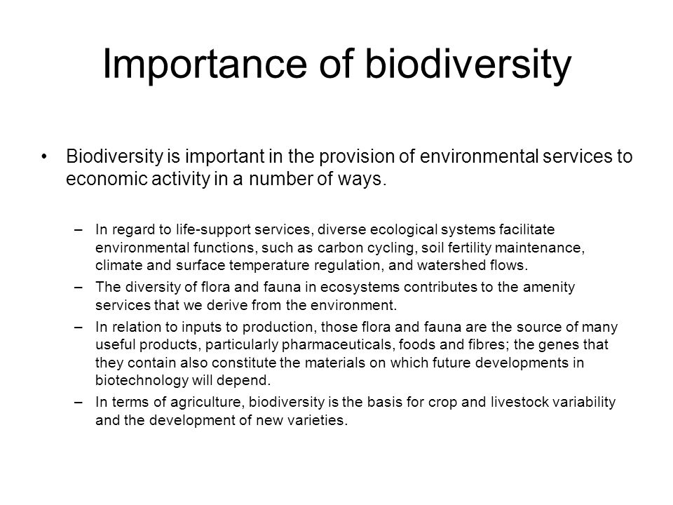 Importance of biodiversity Biodiversity is important in the provision of environmental services to economic activity in a number of ways. –In regard t
