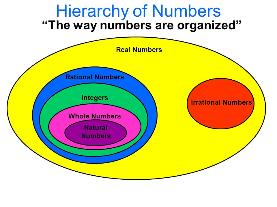 Hierarchy of Numbers The way numbers are organized Real Numbers Irrational Numbers Rational Numbers Integers Whole Numbers Natural Numbers
