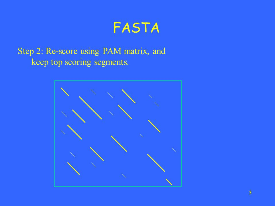 5 FASTA Step 2: Re-score using PAM matrix, and keep top scoring segments.
