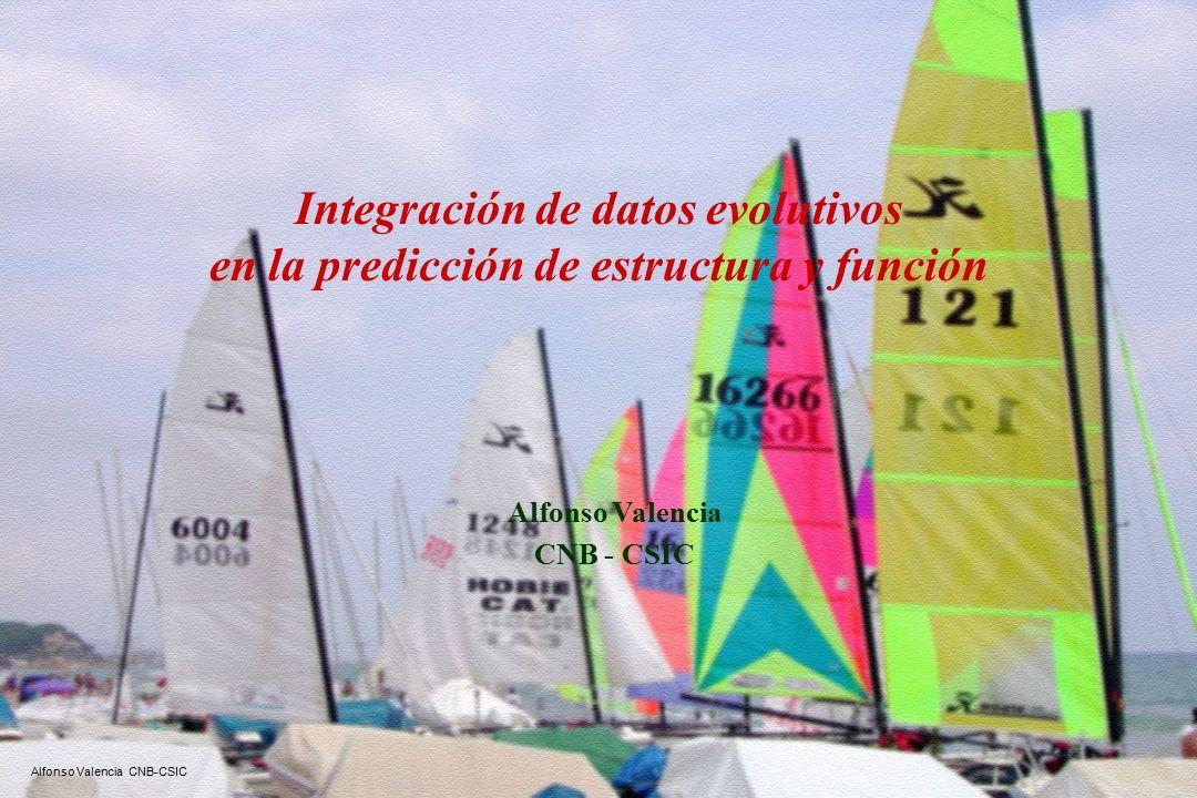 Alfonso Valencia CNB-CSIC Integración de datos evolutivos en la predicción de estructura y función Alfonso Valencia CNB - CSIC