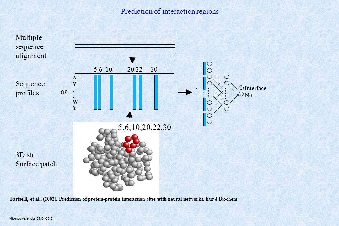 Alfonso Valencia CNB-CSIC Prediction of interaction regions AV..WYAV..WY aa......