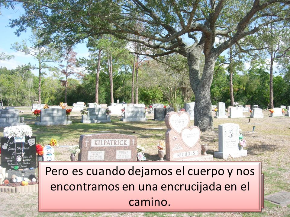 Muchos piensan que la vida termina en la sepultura.
