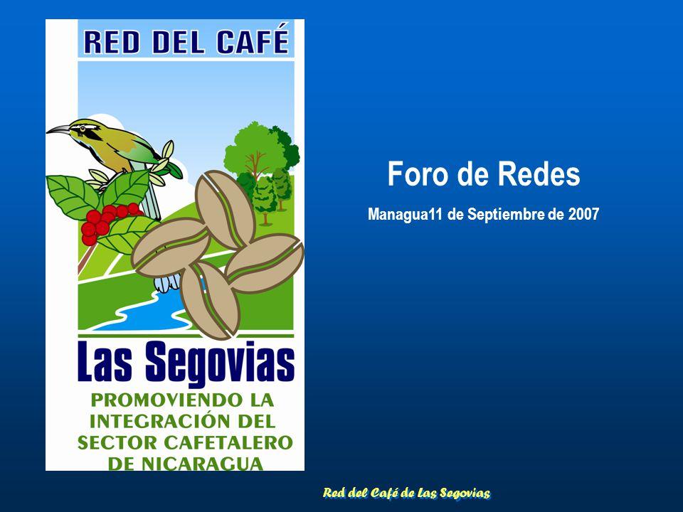 Red del Café de Las Segovias Foro de Redes Managua11 de Septiembre de 2007