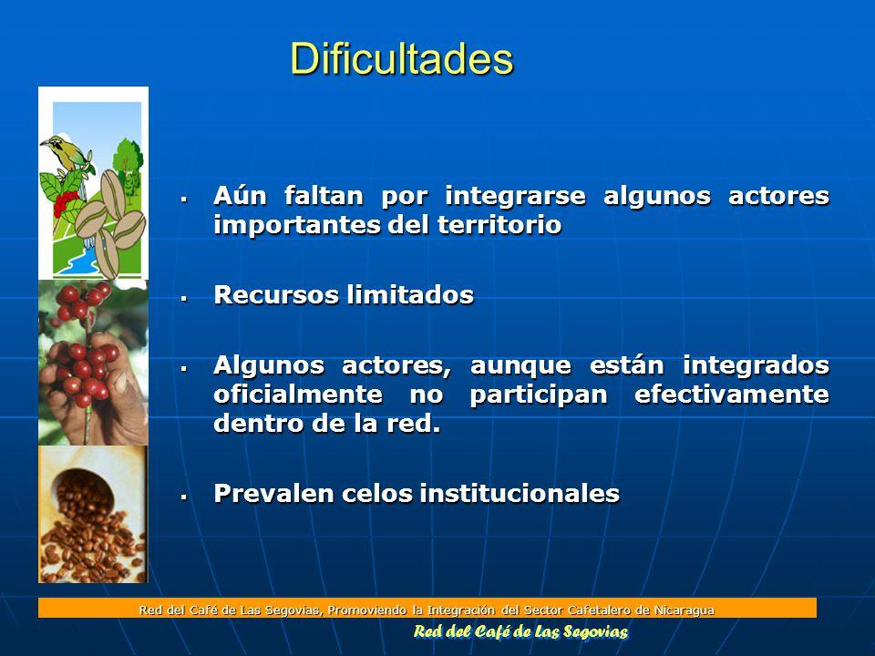 Red del Café de Las Segovias, Promoviendo la Integración del Sector Cafetalero de Nicaragua Dificultades  Aún faltan por integrarse algunos actores importantes del territorio  Recursos limitados  Algunos actores, aunque están integrados oficialmente no participan efectivamente dentro de la red.
