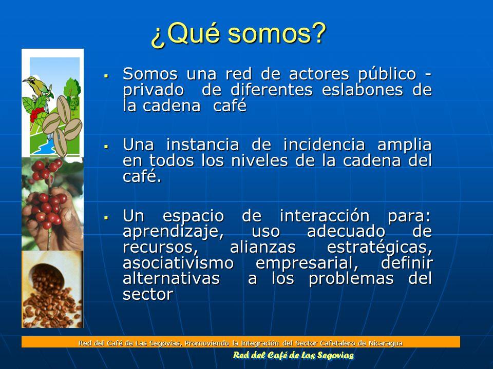Red del Café de Las Segovias, Promoviendo la Integración del Sector Cafetalero de Nicaragua ¿Qué somos.
