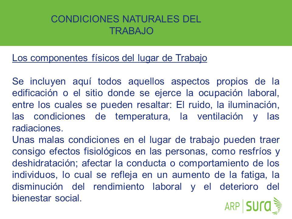 ARP SURA CONDICIONES NATURALES DEL TRABAJO Los componentes físicos del lugar de Trabajo Se incluyen aquí todos aquellos aspectos propios de la edifica