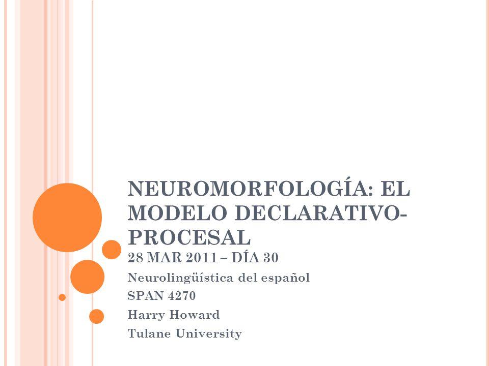 NEUROMORFOLOGÍA: EL MODELO DECLARATIVO- PROCESAL 28 MAR 2011 – DÍA 30 Neurolingüística del español SPAN 4270 Harry Howard Tulane University