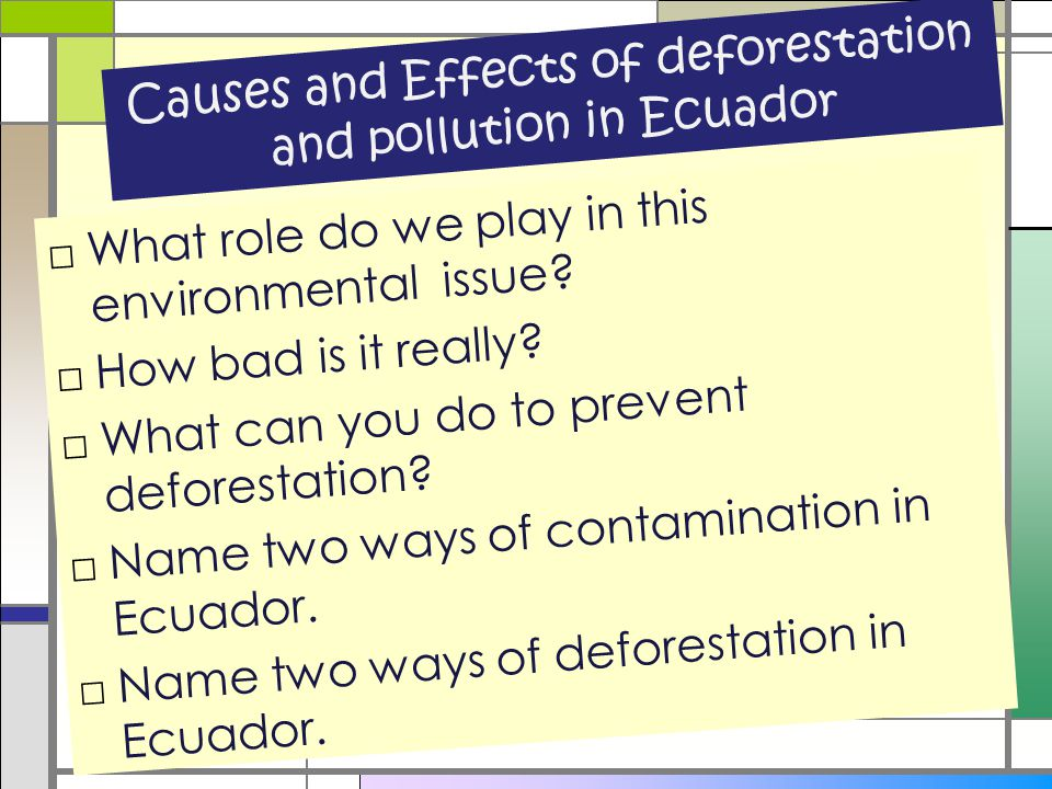 Causes and Effects of deforestation and pollution in Ecuador □What role do we play in this environmental issue? □How bad is it really? □What can you d