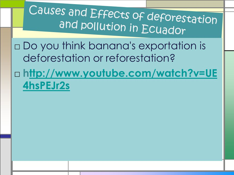 Causes and Effects of deforestation and pollution in Ecuador □Do you think banana s exportation is deforestation or reforestation.