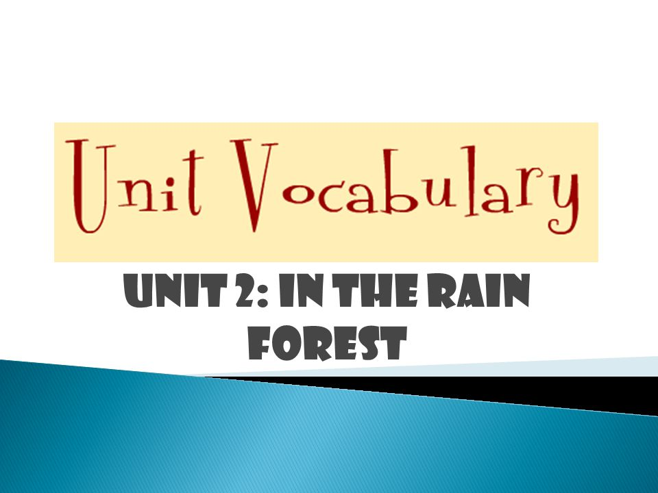 UNIT 2: IN THE RAIN FOREST