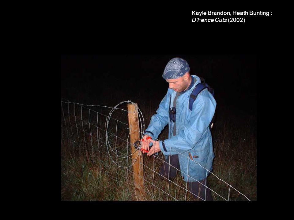 Kayle Brandon, Heath Bunting : D'Fence Cuts (2002)