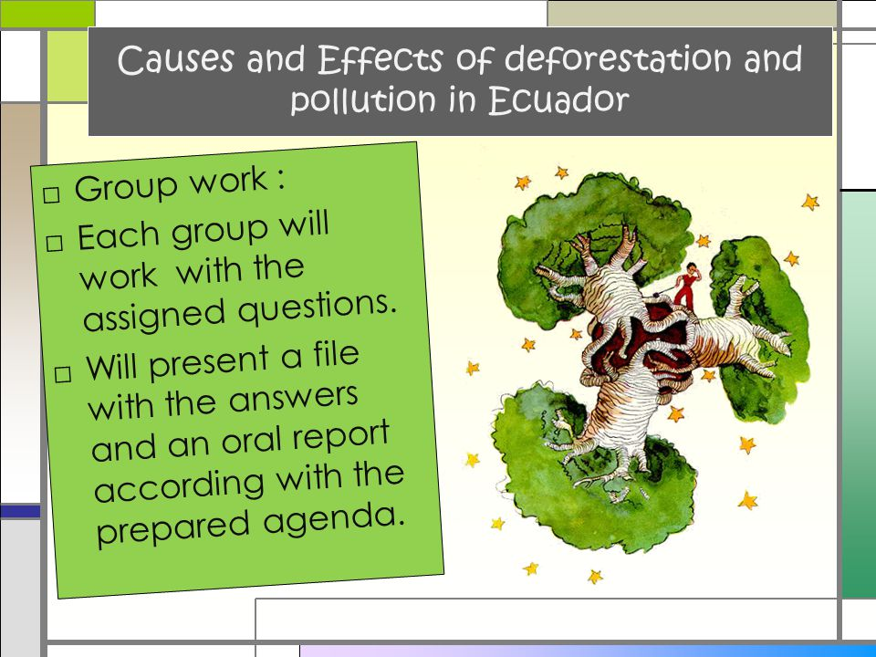 Causes and Effects of deforestation and pollution in Ecuador □Group work : □Each group will work with the assigned questions. □Will present a file wit