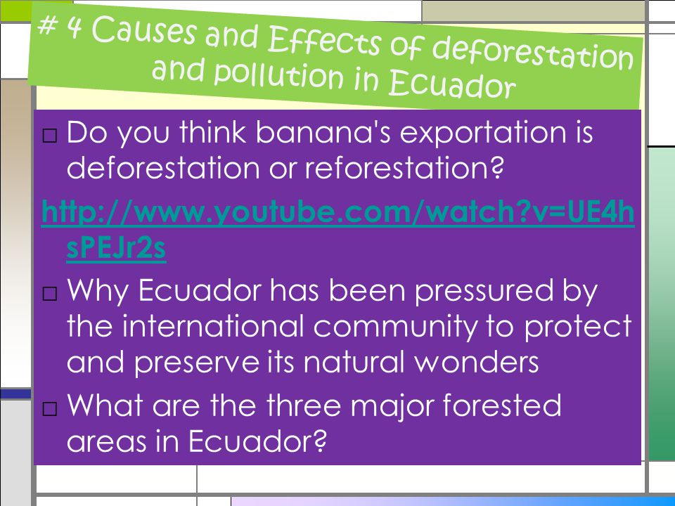 #5 Causes and Effects of deforestation and pollution in Ecuador □What is reforestation and its benefits.