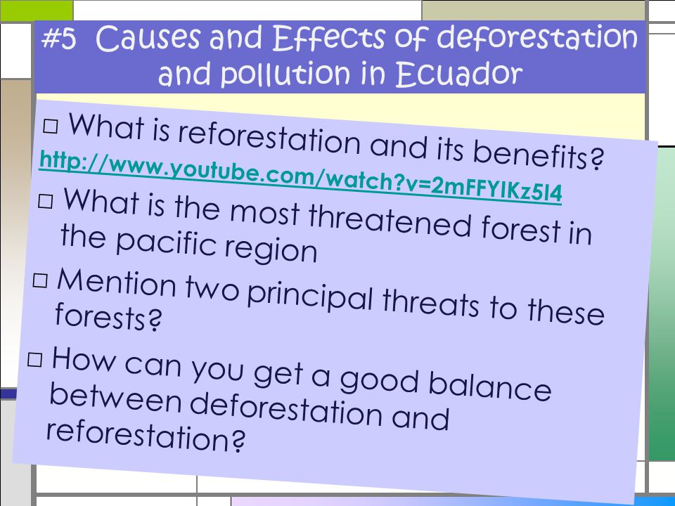 #5 Causes and Effects of deforestation and pollution in Ecuador □What is reforestation and its benefits? http://www.youtube.com/watch?v=2mFFYIKz5I4 □W
