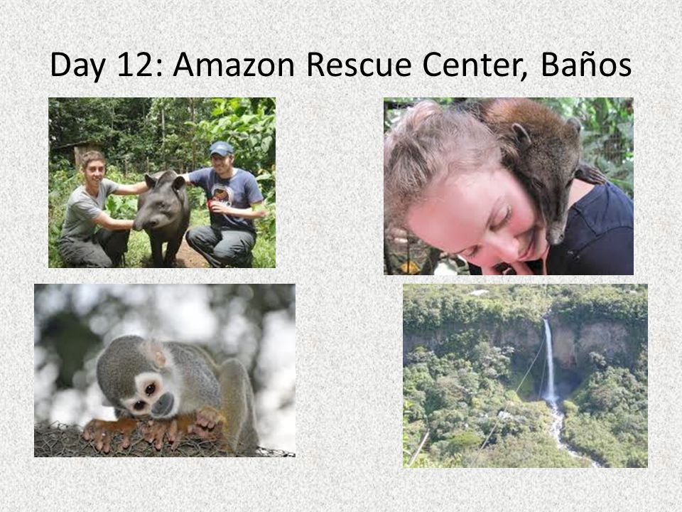 Day 12: Amazon Rescue Center, Baños