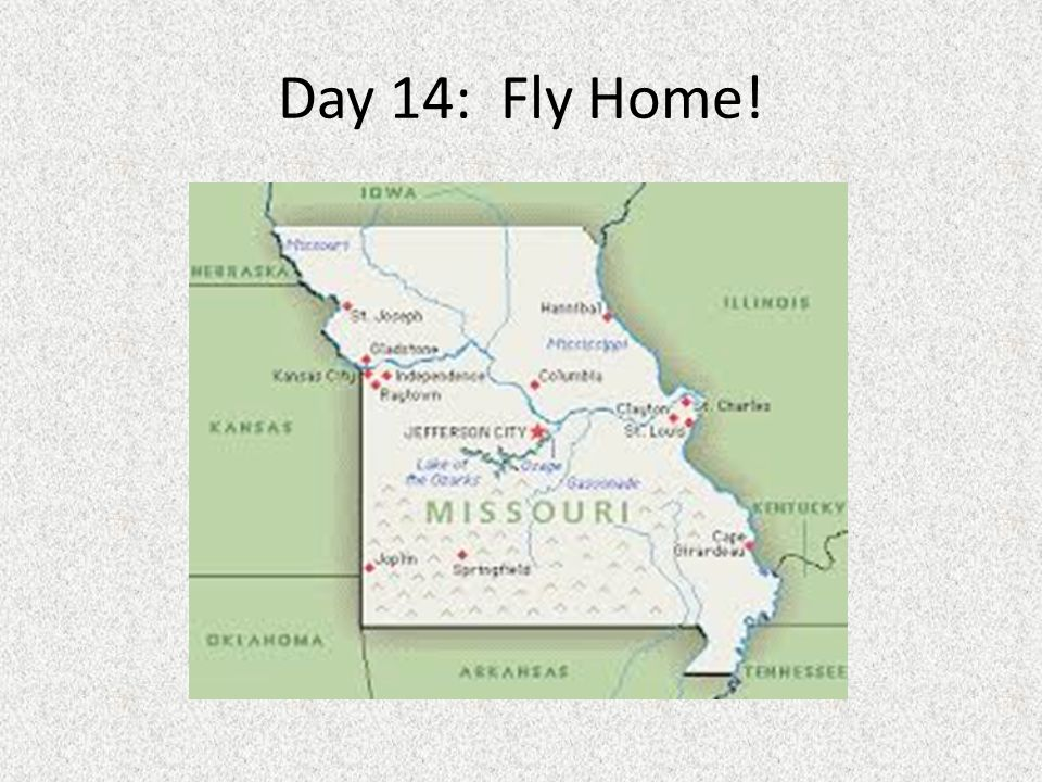 Day 14: Fly Home!