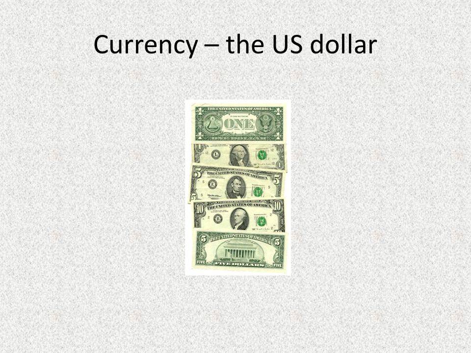 Currency – the US dollar