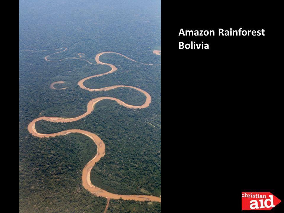 Amazon Rainforest Bolivia