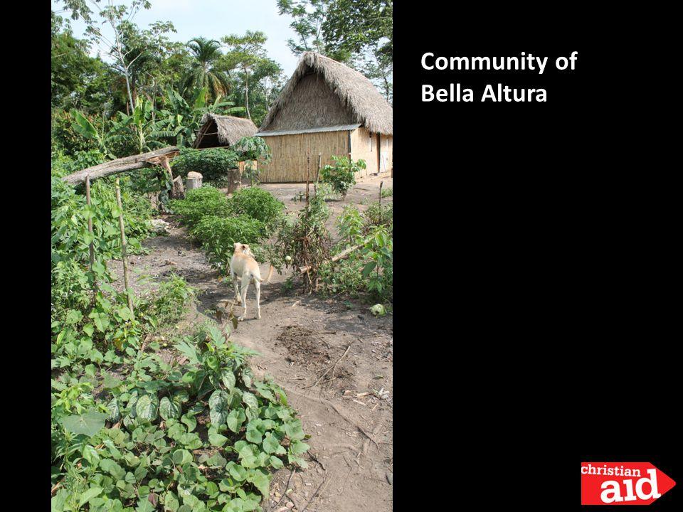 Community of Bella Altura