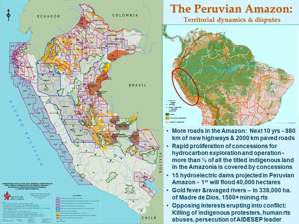 The Peruvian Amazon: Territorial dynamics & disputes More roads in the Amazon: Next 10 yrs - 880 km of new highways & 2000 km paved roadsMore roads in the Amazon: Next 10 yrs - 880 km of new highways & 2000 km paved roads Rapid proliferation of concessions for hydrocarbon exploration and operation - more than ½ of all the titled indigenous land in the Amazonia is covered by concessionsRapid proliferation of concessions for hydrocarbon exploration and operation - more than ½ of all the titled indigenous land in the Amazonia is covered by concessions 15 hydroelectric dams projected in Peruvian Amazon - 1 st will flood 40,000 hectares15 hydroelectric dams projected in Peruvian Amazon - 1 st will flood 40,000 hectares Gold fever &ravaged rivers – in 338,000 ha.