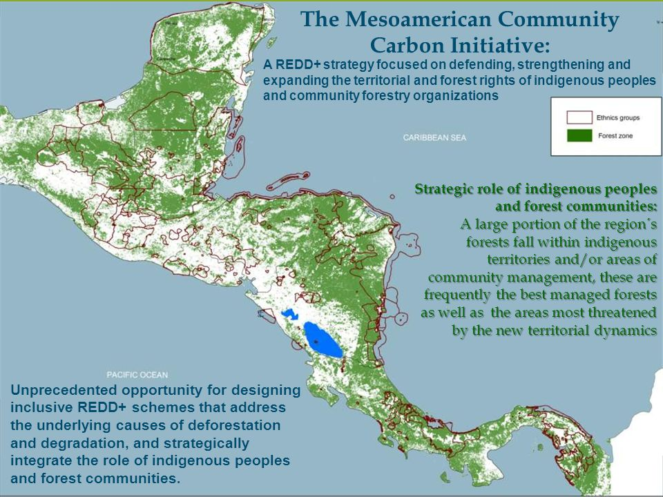 The Mesoamerican Community Carbon Initiative: Strategic role of indigenous peoples and forest communities: A large portion of the region´s forests fal