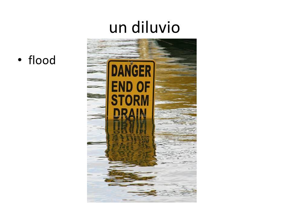 un diluvio flood