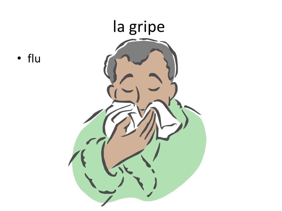 la gripe flu