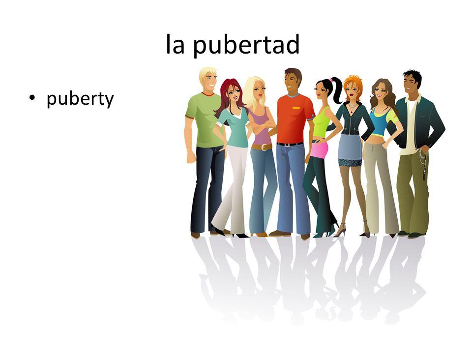la pubertad puberty