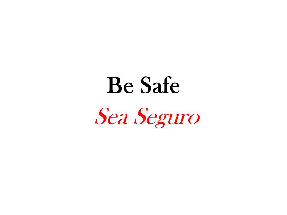 Las reglas de la escuela Sea Seguro Sea Respetuoso Sea Responsable Sea Amable