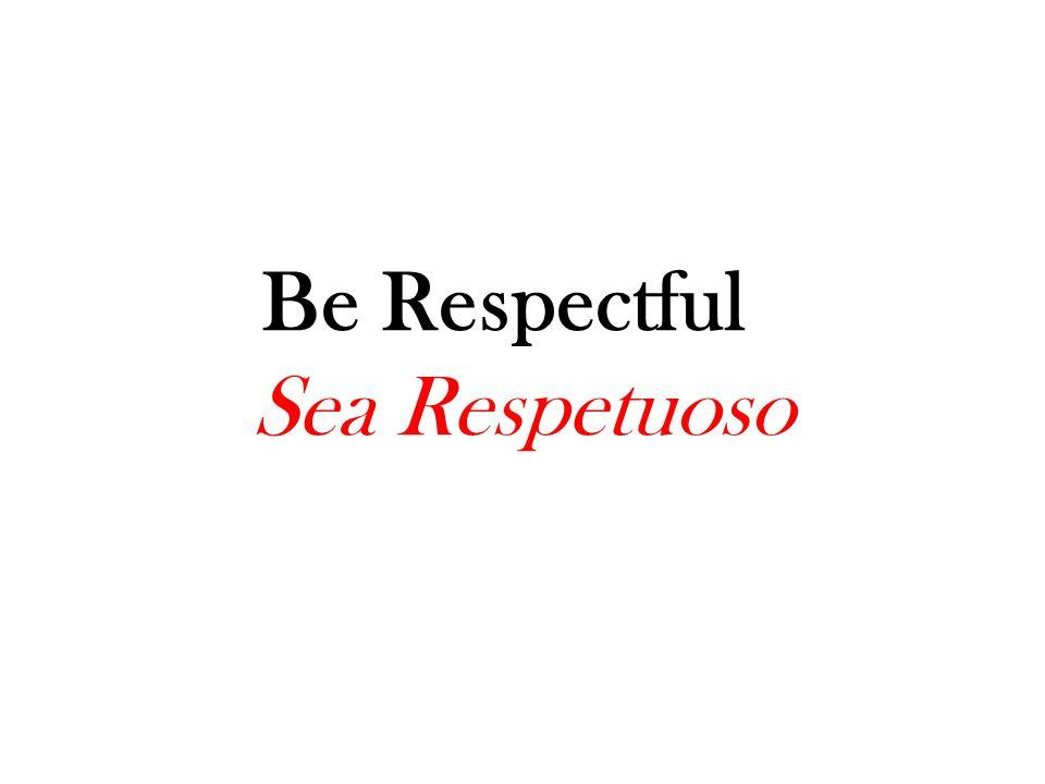 Be Safe Sea Seguro